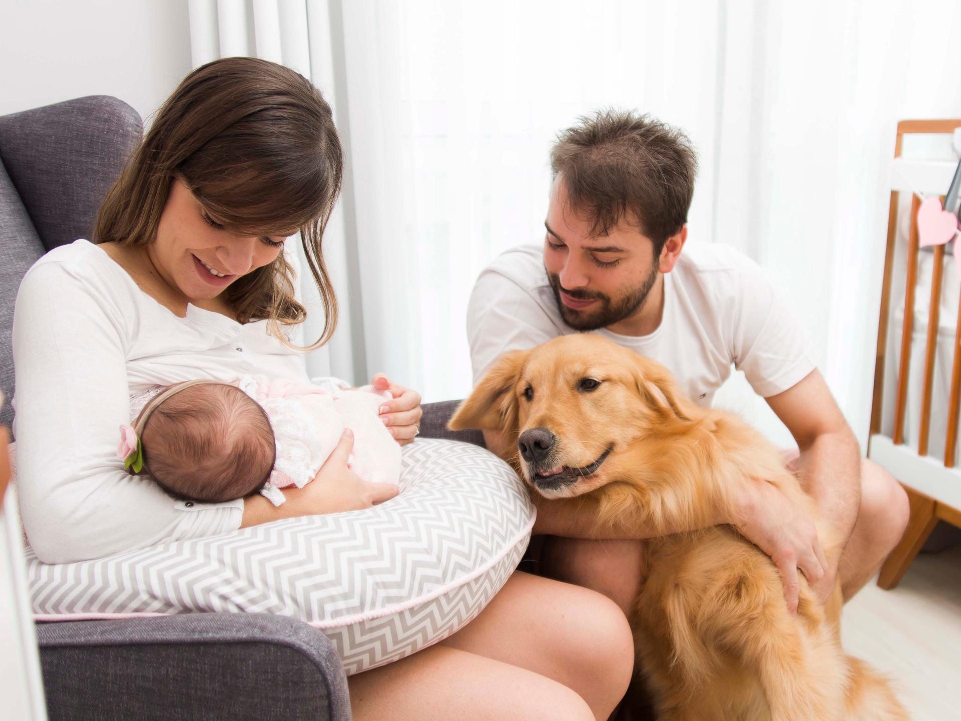 ensaio em casa, ensaio bebê, lifestyle, foto e bebê, newborn em casa, ensaio newborn, ensaio de família, foto de recém-nascido, inspiração ensaio bebê, família, amor, foto com animais, ensaio com cachorro