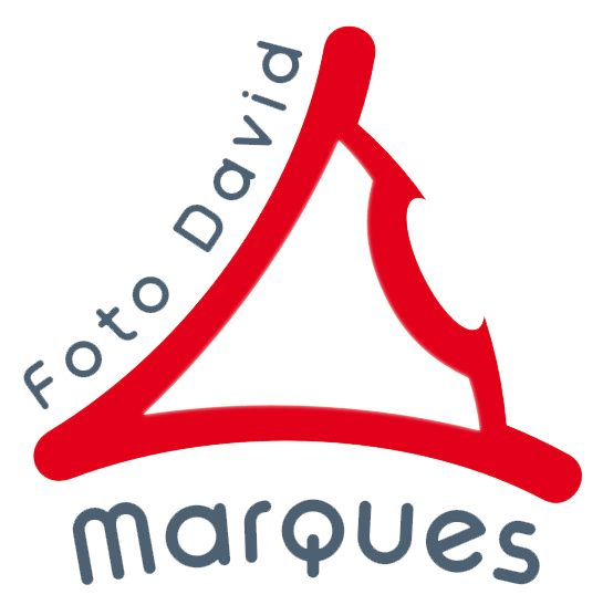 Logotipo Foto David Marques