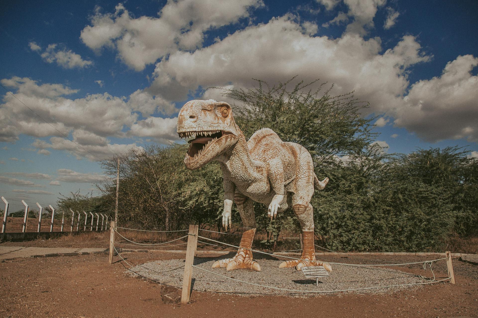 paraiba, vale dos dinossauros, sousa, sertao, dinossauros, fine art