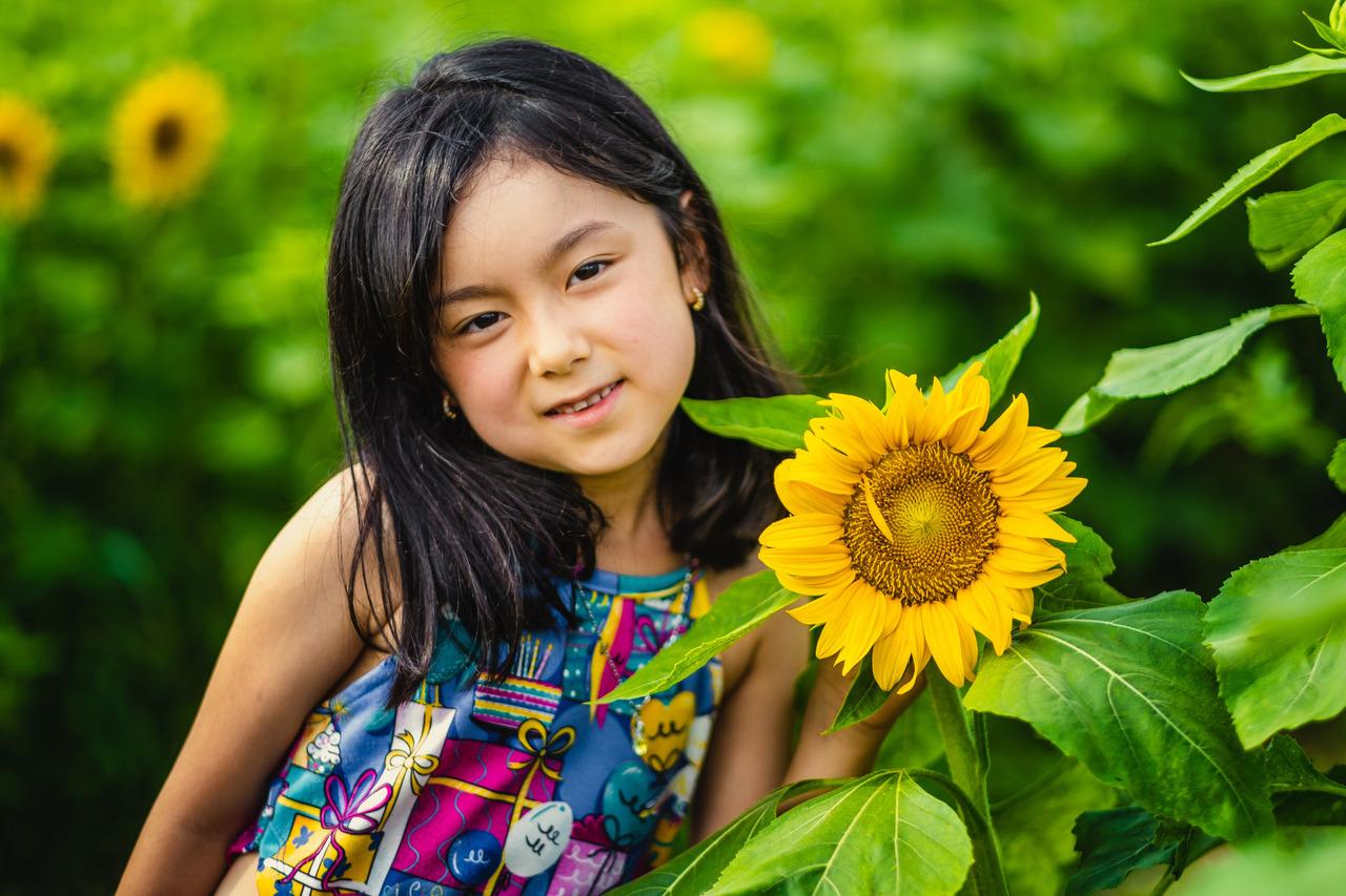ensaio campo de girassois no japao, ensaio fotografico no japao, fotografo de familia no japao, ensaio em aichi, ensaio infantil no japao