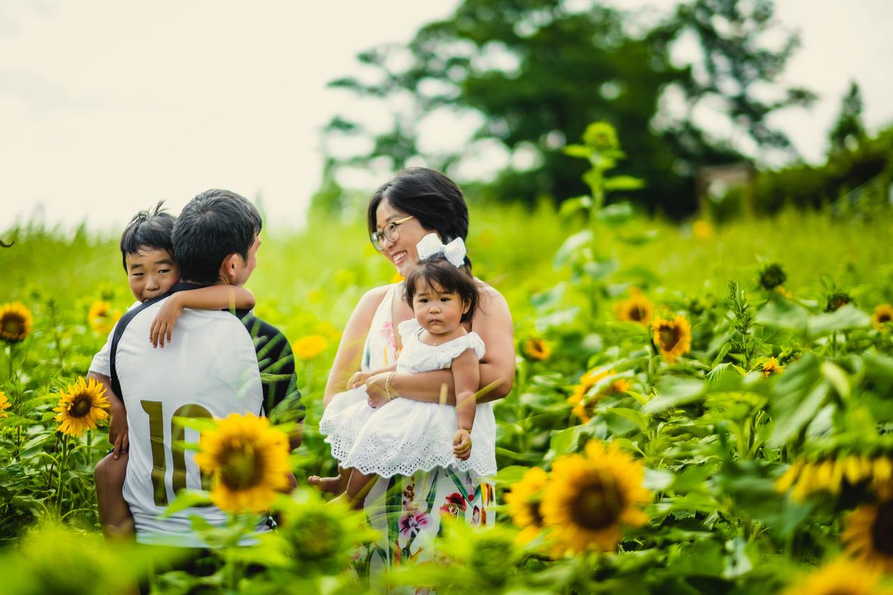 ensaio familiar nos campos de girassois, ensaio diferente no japao, ensaio fotografico no japao, fotografo de familia no japao, fotografo no japao