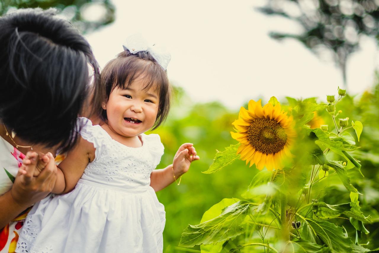 ensaio mae e filha no japao, ensaio fotografico no japao, fotografo de familia no japao, fotografo no japao, ensaio nos campos de girassois no japao