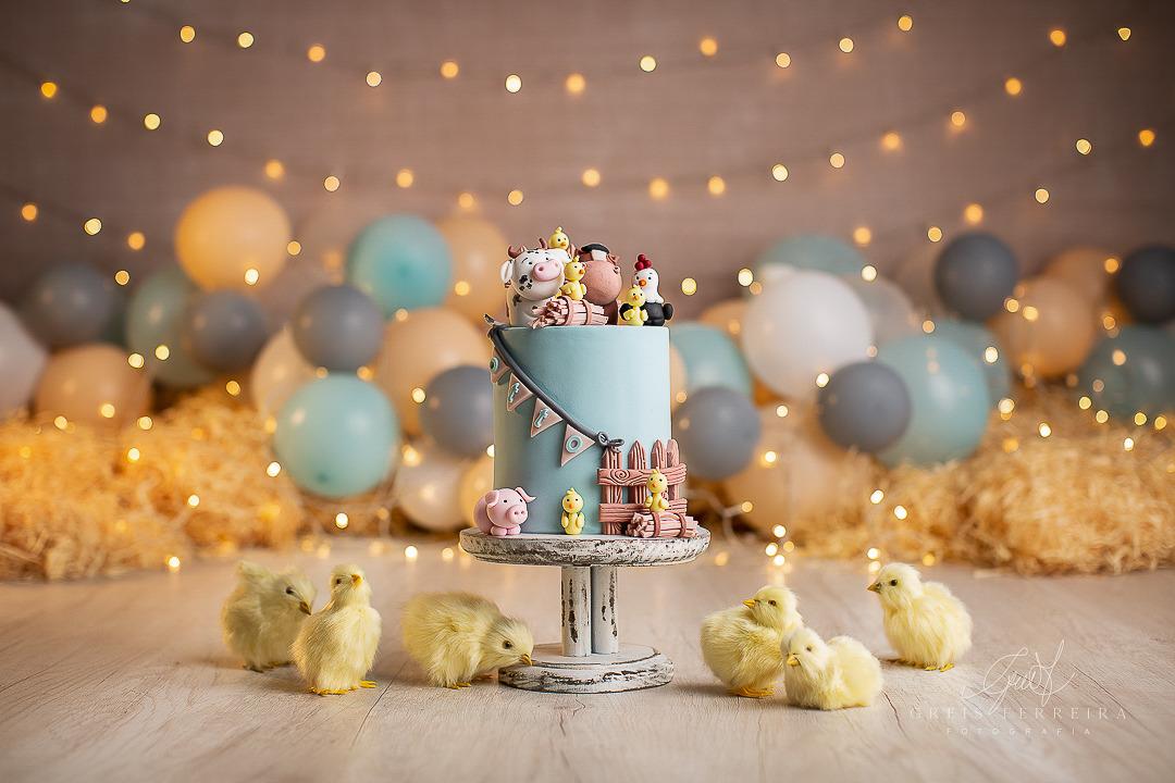 ensaio de bebê bolo smash the cake fazendinha